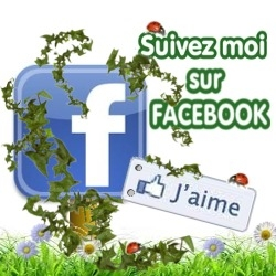 suivez moi sur facbook