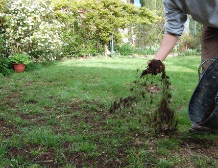 terreautage pelouse à regarnir