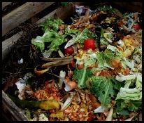 comment enrichir sa terre - dechets-compost