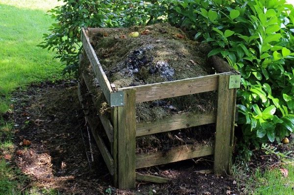 faire son compost - engrais naturel