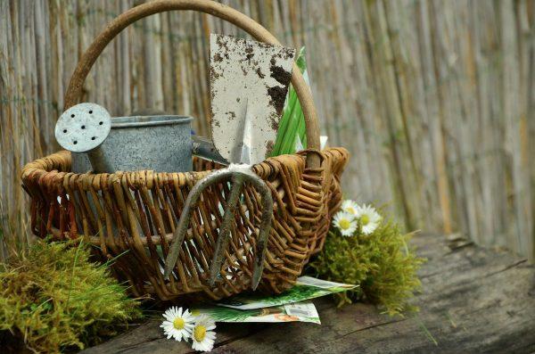 outils de jardinage.